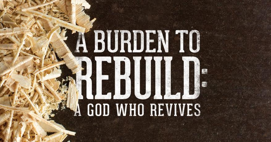 Rebuilding With Purity